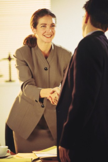 Business professionals shaking hands : Stock Photo