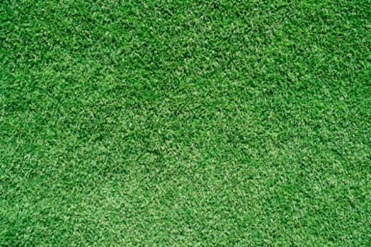 Stock Photo: 1557R-370636 Grass