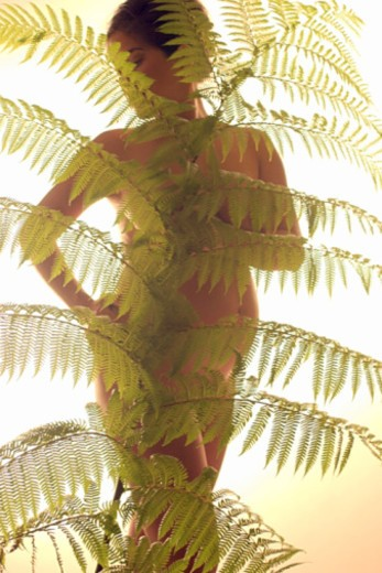 Stock Photo: 1557R-371385 Nude pregnant woman behind fern