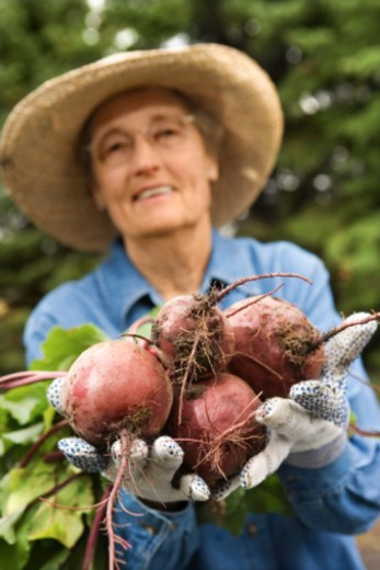 Stock Photo: 1557R-384430 Woman holding turnips