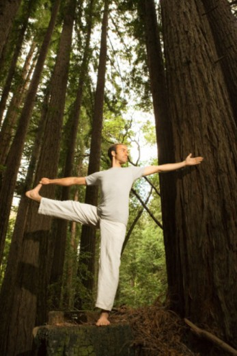 Man doing yoga in forest : Stock Photo