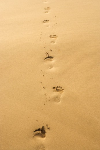 Footprints in sand : Stock Photo