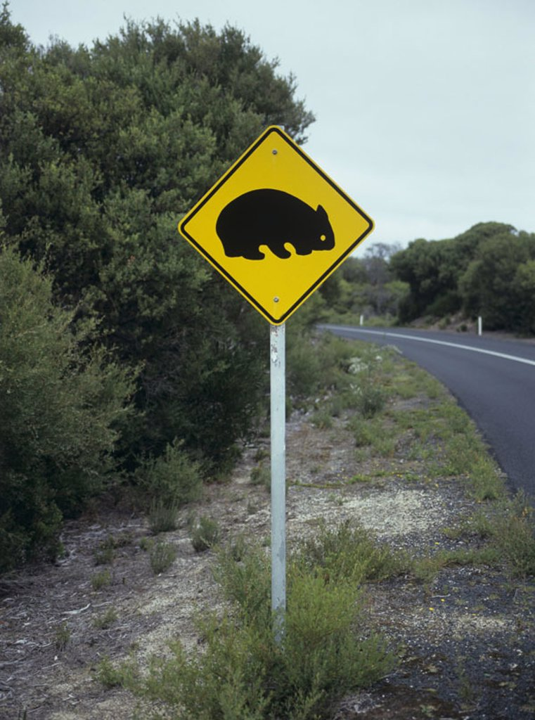Australia, street, warning sign, respect, Wombads : Stock Photo