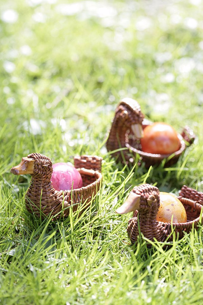 Meadow, duck-baskets, Easter eggs, series, Easter, Easter, Eastertime, party, tradition, custom-hood, Easter-custom-hood, sunny, spring, grass, baskets, ducks, duck-form, outside, quietly life, fuzziness, : Stock Photo