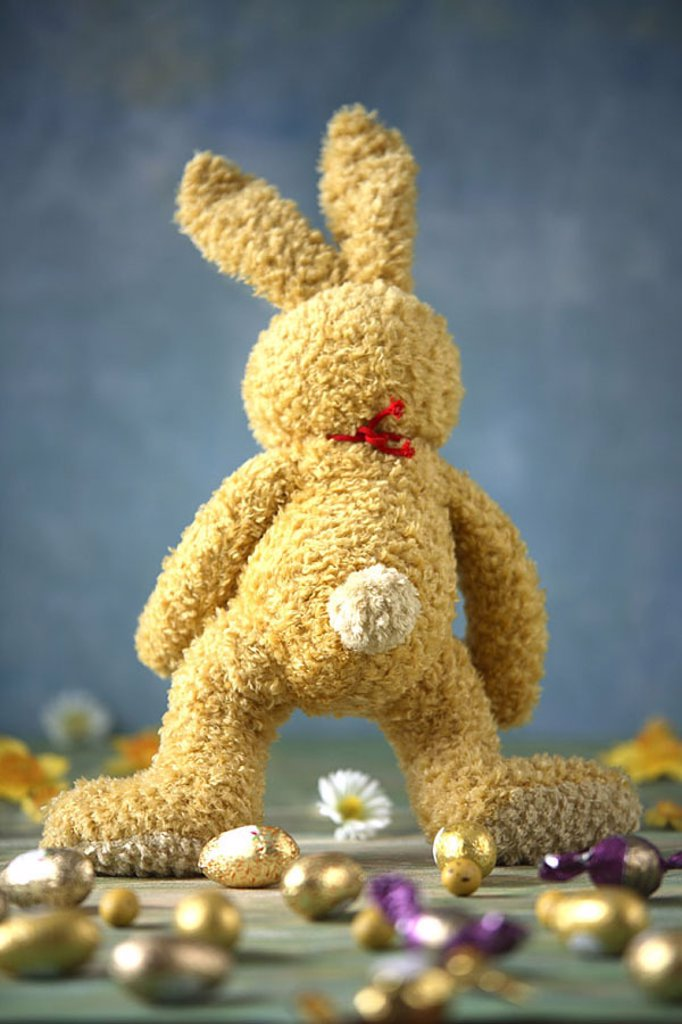 Easter, material-hare, back-opinion, candies, Easter eggs, blooms, Easter bunny, material-animal, plush-animal, hare, sweetness, chocolate-eggs, symbol, Easter-custom-hood, custom-hood, tradition, quietly life, fact-reception, : Stock Photo