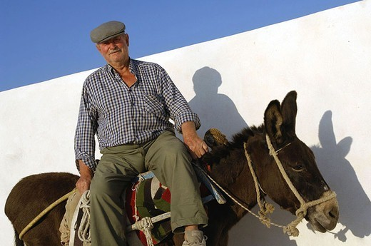 Greece, Kykladen, island Santorin, man, donkeys, rides, no models release, Europe, Mediterranean-island, destination, people, Greek, usefulness-animal senior, headgear, cap, regional-typically, animal, weigh-animal, smiles, kindly, gaze camera, : Stock Photo