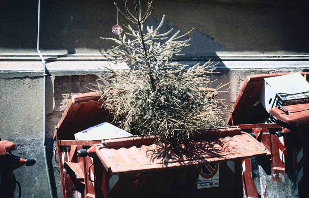 House-wall, waste-containers, Christian-tree, Christmas, tree, fir-tree, waste disposal, discards, containers, garbage, waste, symbol, past, been finished, uses, discarded, outside, symbol, waste-economy, : Stock Photo