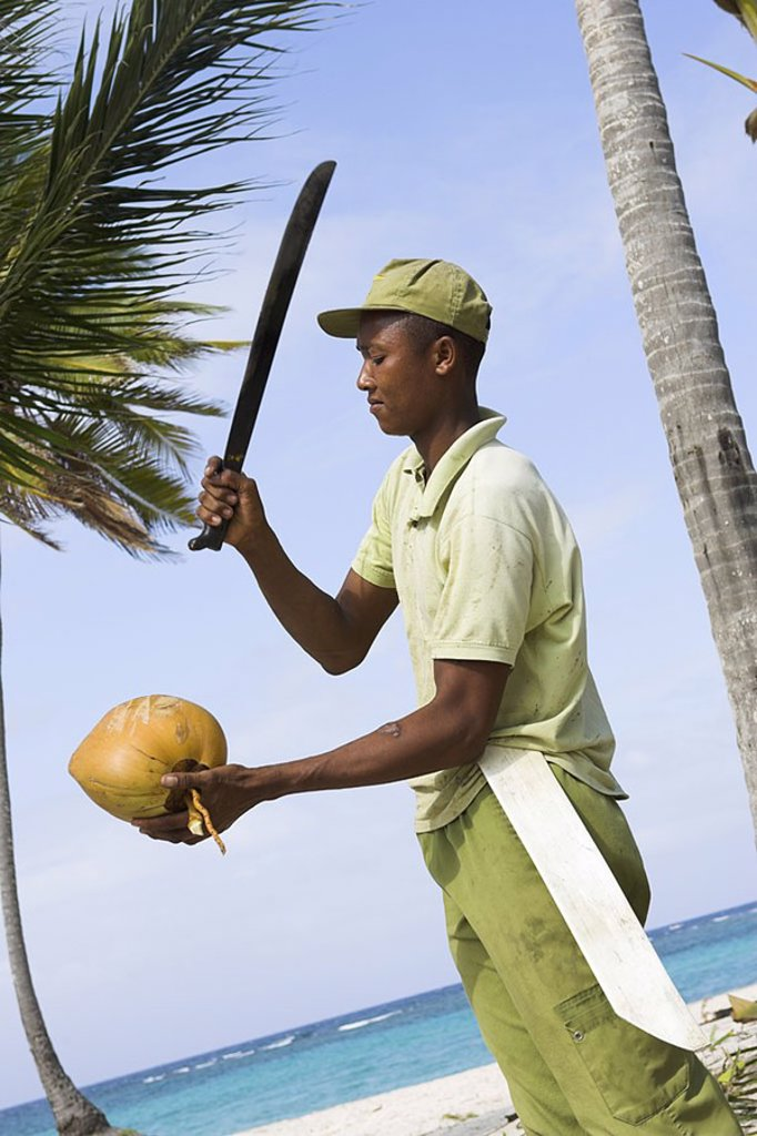 Stock Photo: 1558-117818 Caribbean, native, machete, coconut, opens, detail, at the side, no models release, series, people, people of color, fruit sign-cap, knives, brags, hits, symbol, coconut-milk, beverage, refreshment, refreshment-beverage, fresh,