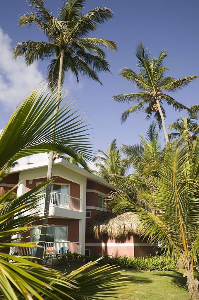 Dominican republic, hotel, palm-garden, detail, Caribbean, big Antilles, island, hotel-installation, buildings, garden, palms, symbol, vacation, summer-vacation, tourism, destination, summers, human-empty, : Stock Photo