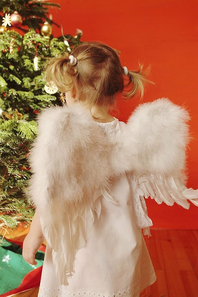 Christmas, child, girls, braids, little dress, angel-wings, back-opinion, ´Christmas-angels´, Christian-tree, people, toddler, 2-4 years, wings, outfit, angels, little angels, fir-tree, views decorated, decoration, Christmas-decoration, festive, Christmas : Stock Photo