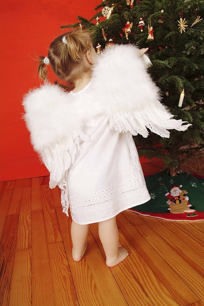 Stock Photo: 1558-119070 Christmas, child, girls, braids, little dress, angel-wings, back-opinion, ´Christmas-angels´, Christian-tree, people, toddler, 2-4 years, wings, barefoot, outfit, angels, little angels, plays, views, decorated Christmas-decoration, Christmas-like, wall re