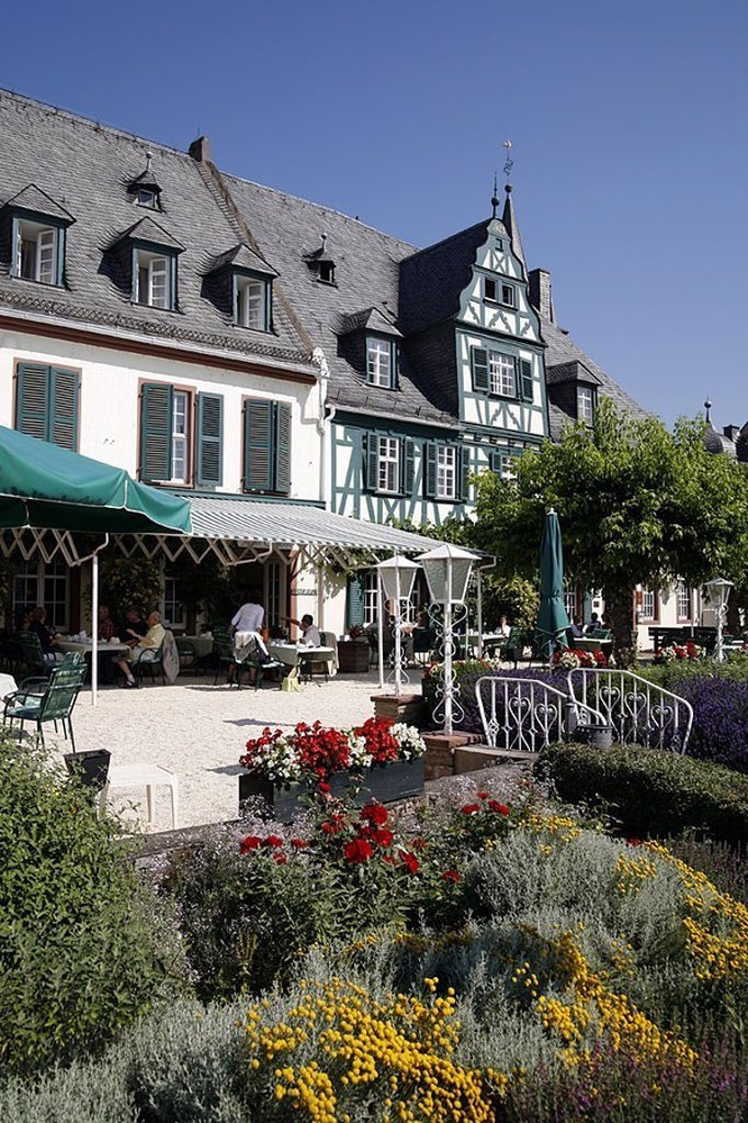 Stock Photo: 1558-119778 Germany, Hesse, Rhine-district, Oestrich-Winkel, hotel swan, terrace, flowers, detail,