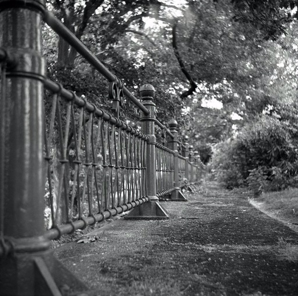 Germany, North Rhine-Westphalia, meal, villa hills park fence detail s/w, culture-capital of Europe 2010, Ruhr area, sight, museum, museum-terrains, park, trees, shrubs, plants, metal-fence, wrought-iron, human-empty, vanishing point, silence, fuzziness, : Stock Photo