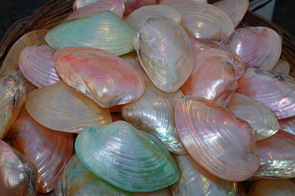 Stock Photo: 1558-124367 Greece, market, basket, sale, mussel-peels, colorfully, gleams, series, souvenir-sale, souvenirs mussels lime-peels green, pink shines, mother-of-pearl, retails, trade economy concept selection variety, quantity, Rhodes, Rhodes-city,