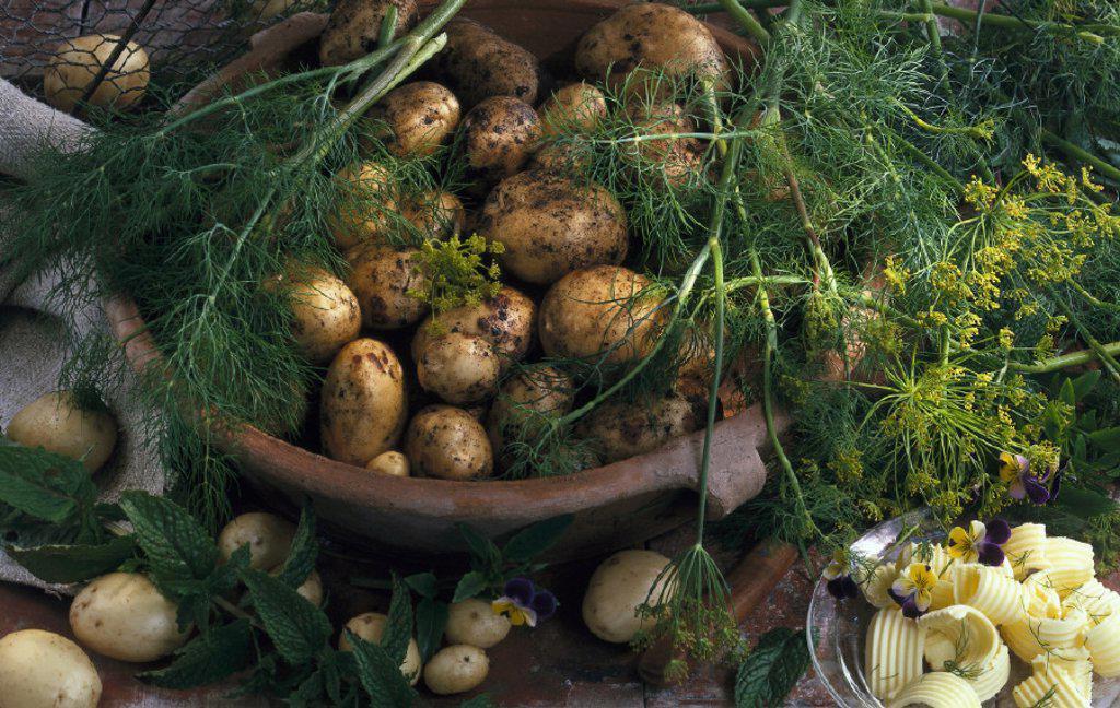 Vegetable, Potatoes, Still life : Stock Photo