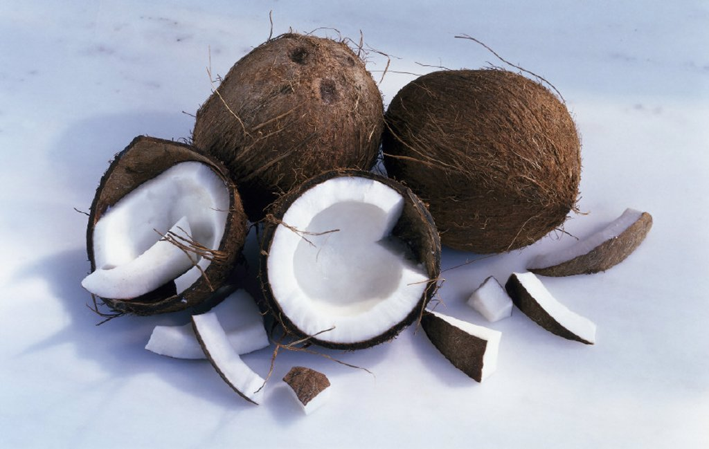 Stock Photo: 1558-128845 Still life, Coconuts, Nuts