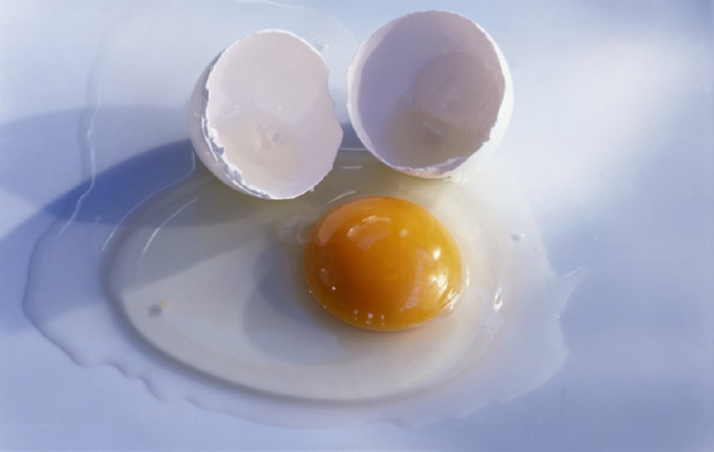 Yolk, Protein, Still life : Stock Photo