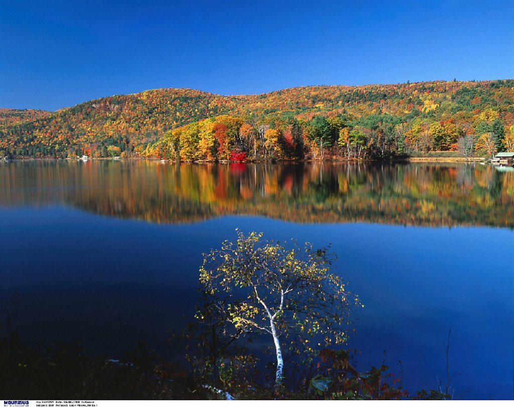 USA, America, Vermont, Lake Morey, Autumn : Stock Photo
