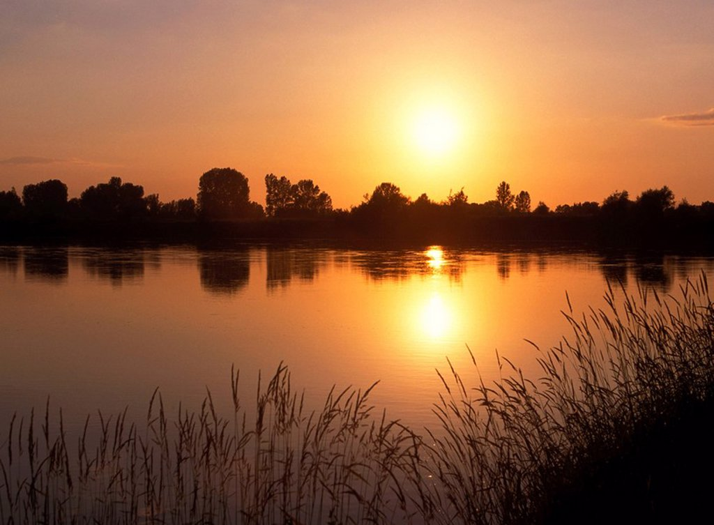Stock Photo: 1558-132062 Poland, Mazovia, river San, landscape, sunset, Eastern Europe, nature, river-landscape, water, shore, plants, trees, bushes, vegetation, deserted, loneliness, silence, silence, idyll, outside, romanticism, sun, color-mood, color orange, mood-full,