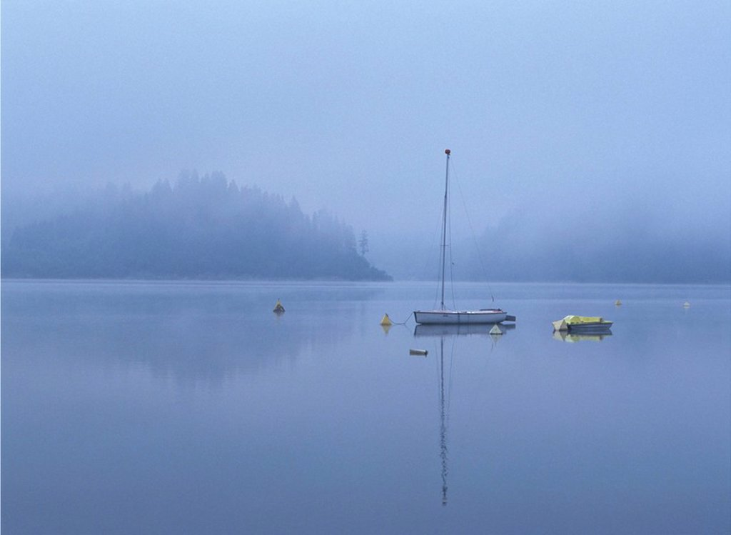 Stock Photo: 1558-132064 Poland, river Dunajec, buoys, boats, fog, Eastern Europe, water, anchor-buoys, sailboats, pedal boat, foggy, deserted, leaves, mysteriously, mystically, loneliness, twilight, outside, morning, blue-gray, dismal,. Poland, river Dunajec, buoys, boats, fog, Eastern Europe, water, anchor-buoys, sailboats, Tretboot, foggy, deserted, leaves, mysteriously, mystically, loneliness, twilight, outside, morning, blue-gray, dismal,