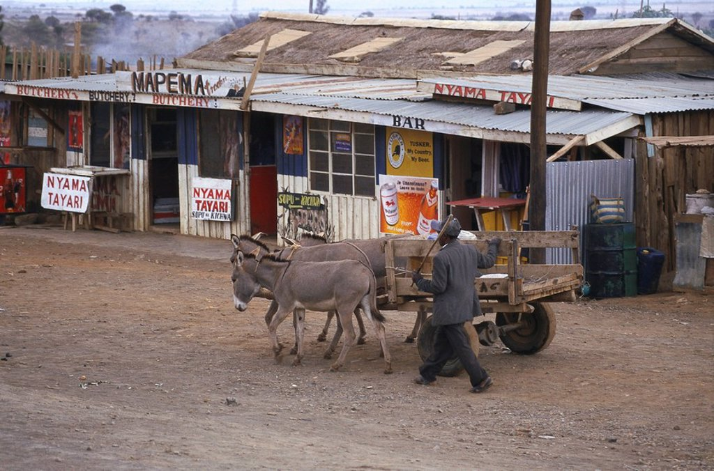 Stock Photo: 1558-142683 Kenya, Nakurusee, village, street, man, donkey-cars, Africa, East-Africa, side street, sand-street, people, native, cars, team, animals, donkeys, three, donkey-team, rural, simply, simply, outside,