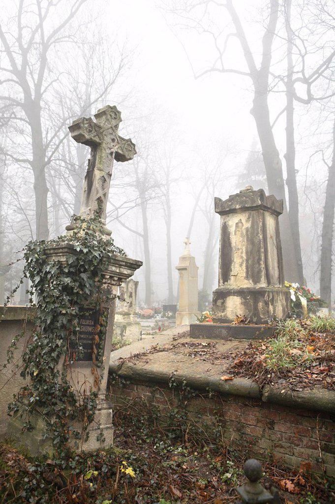 cemetery, : Stock Photo