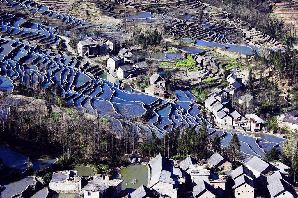 Stock Photo: 1558-145834 Asia, China, Yunnan, Yuanyang, villages, rice_terraces, supervision