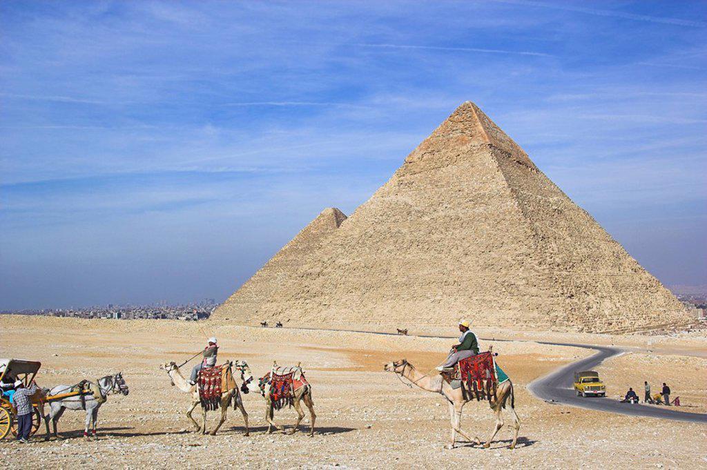 Stock Photo: 1558-145887 Egypt, Cairo, Giseh, pyramids, rding a camel