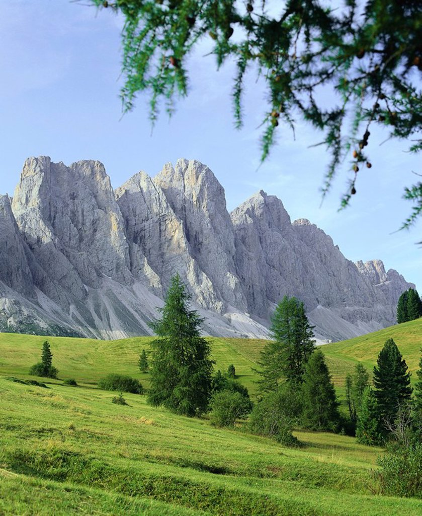 Stock Photo: 1558-149497 Italy, South_Tyrol, Dolomites, Villnösstal, Geisler_group, summer, North_Italy, mountains, high mountain regions, Alps, mountain scenery, Furchetta, mountain_meadow, Alm, nature, habitat, deserted, season,