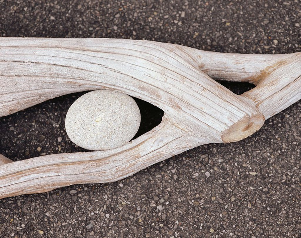 Stock Photo: 1558-152895 nature_art, wood, stone, sluiced logs, pine wood, weathers, old, fork, branch_fork, tree_root, root, branch, river_wood, stone, shingle, river_shingle, round, oval, gray, granite, symbol, concept, symbiosis, harmony, connection, adaptation, caught communi
