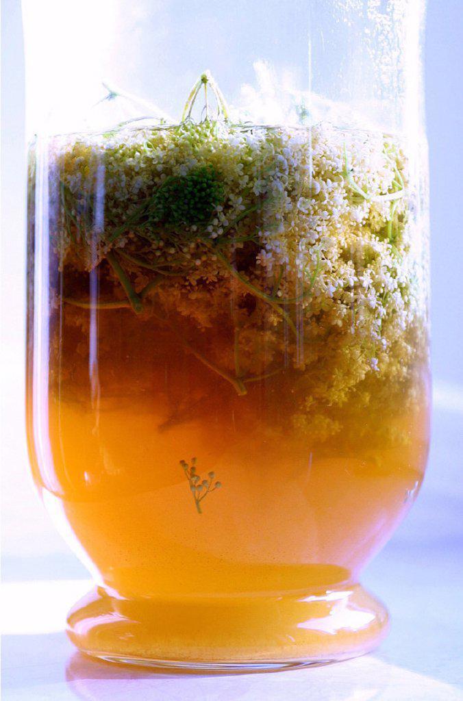 Glass, Elderberry, Bloom stock : Stock Photo
