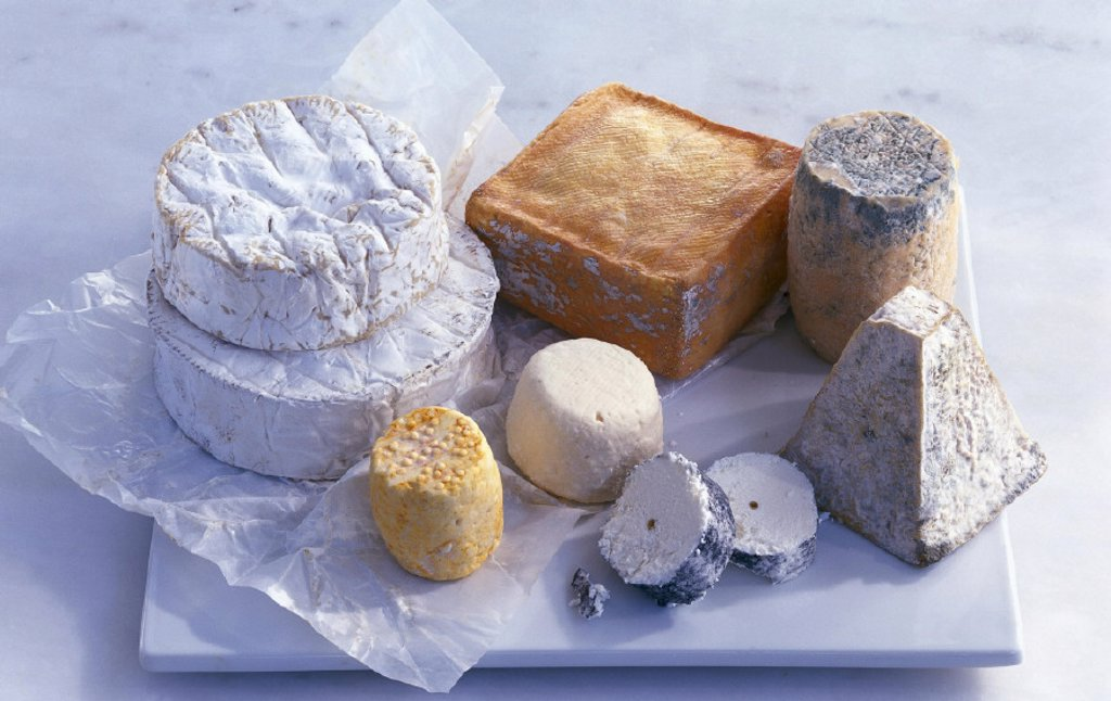 Stock Photo: 1558-51318 Sorts of cheese, French, different