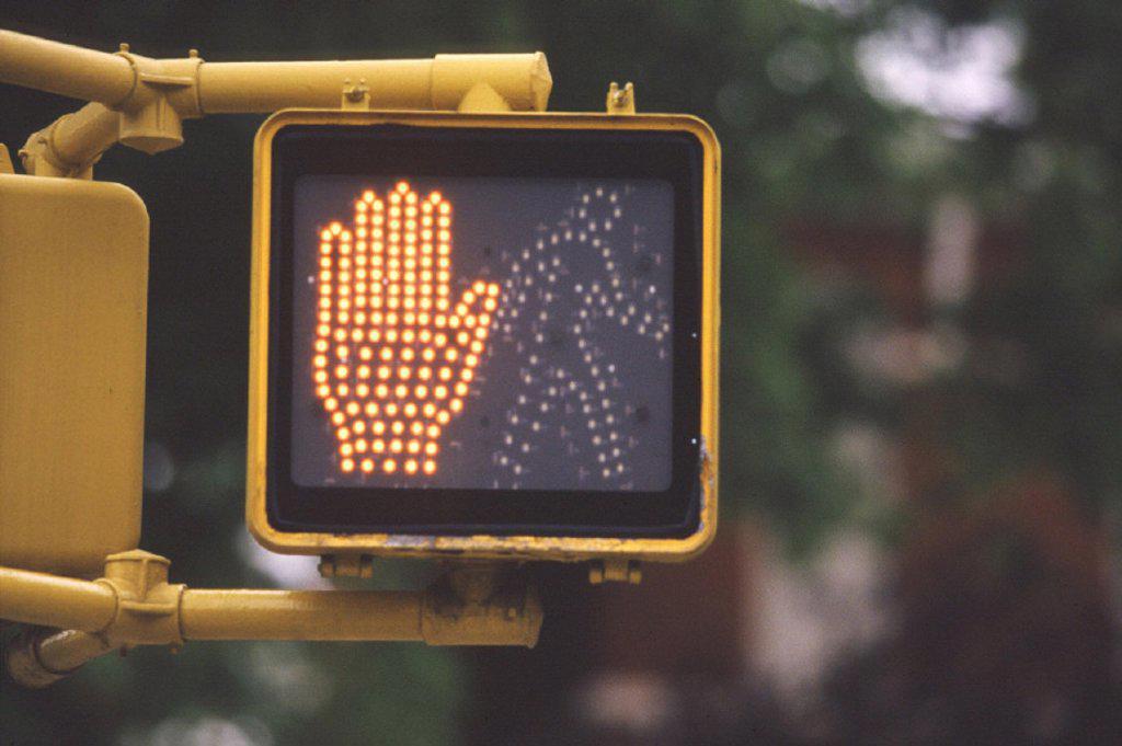 Stock Photo: 1558-54042 USA, pedestrian traffic light, blinker