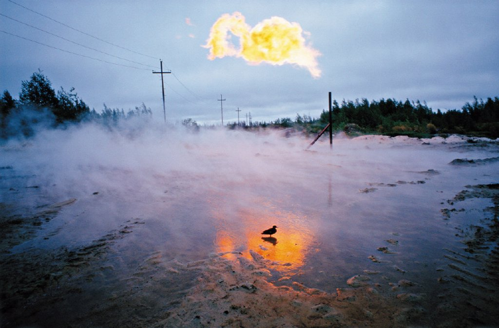 Stock Photo: 1558-57745 Russia, Siberia, gasfield, flaring