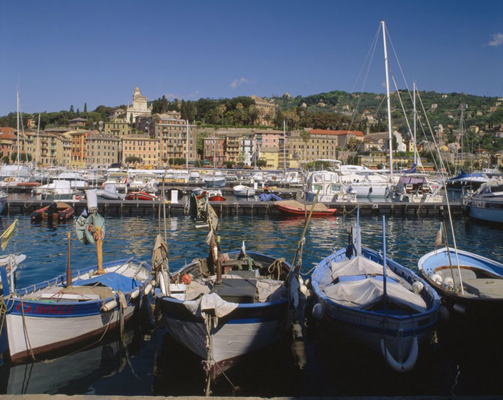 Italy, Riviera of di Levant, Santa  Margherita Ligure, skyline, harbor  Europe, Southern Europe, North Italy, province Ligurien, coast place, place, place, harbor opinion, landing places, boats, ships, fisher boats, Ligurisches sea, Mediterranean, : Stock Photo