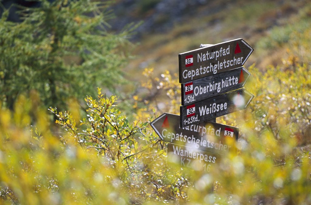 Stock Photo: 1558-67580 Hiking, signposts, meadow   Austria, Ötztaler Alps, nature, wood, sign, hint, way description, trendsetting, footpaths, time information, guidance, bearings, information, summer,