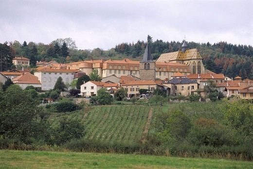 France, region Rhone-Alpes,  Ambierle, skyline, church  Europe, place, fields, houses, chapel, sacral construction, construction, steeple, 15. Jh. : Stock Photo