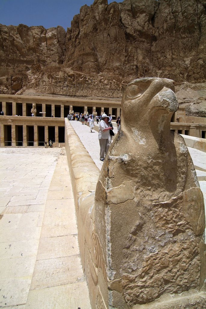 Stock Photo: 1558-73264 Egypt, Luxor, Theben-West,  Terrace temples of the Hatshepsut,  Visitors, Falkenstatue, Africa, head Egypt, valley of the queens, destination, destination, sight, temples, Hatshepsut-Tempel, UNESCO-World Heritage Site, statue, falcon, Horus, tourism, tour