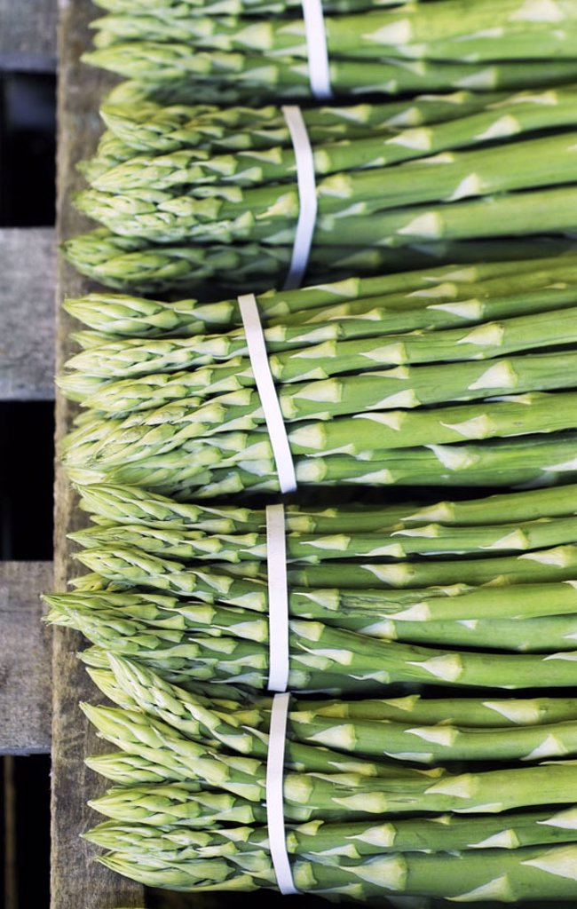 Stock Photo: 1558-74032 Wood palette, green asparagus, focused, Detail  Agriculture, agrarian economy, asparagus cultivation, palette,, Harvest, asparagus harvest, harvest-newly, asparagus poles, green,  Pole asparaguses, vegetable asparaguses, Asparagus, nutrition healthy, vita
