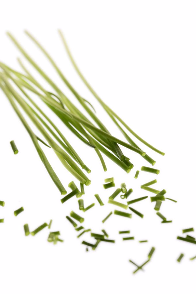Chive, cut   Food, leek, herbs, herb, herbs, seasoning, seasoning, grass leek, Allium schoenoprasum, kitchen seasoning herb, abandoned, röhrig, concept, spicy, aromatically, color mood green, quietly life, fact reception, studio, free plates : Stock Photo
