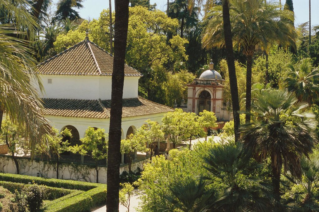 Stock Photo: 1558-77650 Spain, Andalusia, Sevilla, Alcazar,  Grounds  Europe, Southern Europe, Iberian peninsula, city, destination, sight, culture, architecture, real Alcázares, fortress of the kings, style, UNESCO-World Heritage Site, garden, park, lawn