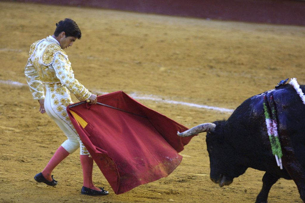 Spain, Valencia, bullring, Torero,  Cloth, bull, spears,  no models release!,  Series, sight, tradition, attraction, traditions, show fight, arena, bullfight, animal, wildly, furious, bloody, blood, man, helpers, uniform, outfit, whole bodies, Muleta, Tuc : Stock Photo