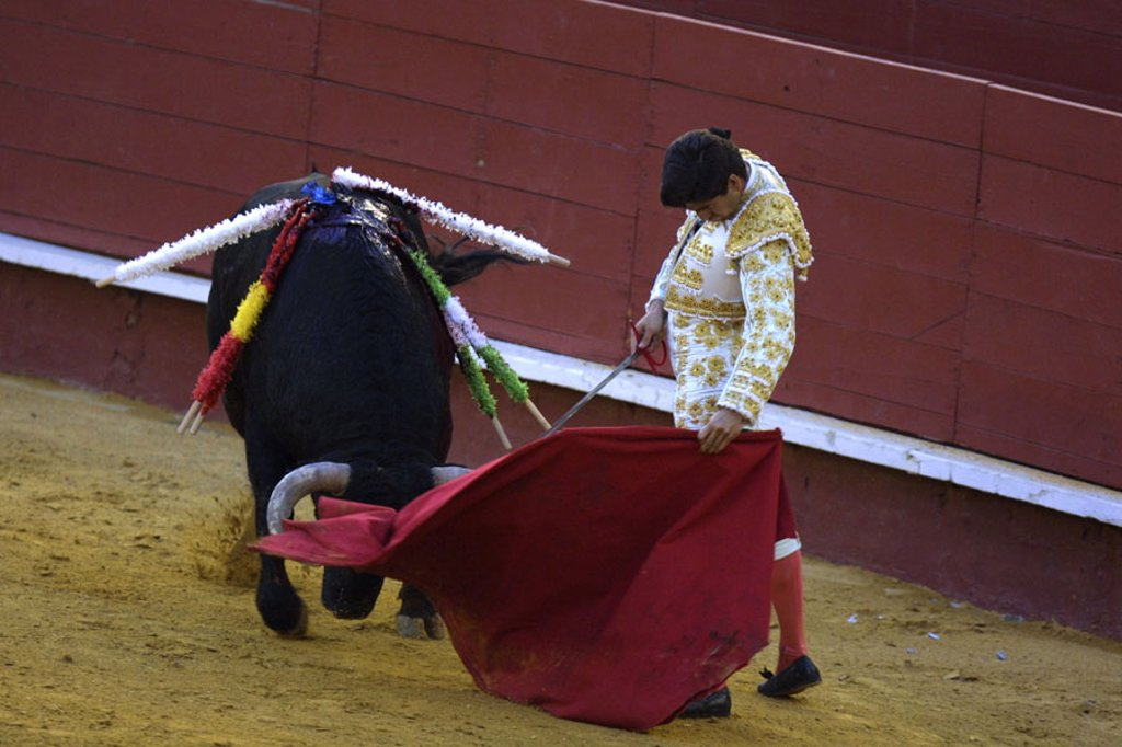 Stock Photo: 1558-86122 Spain, Valencia, bullring, Torero,  Cloth, bull, spears, bleeds,  no models release!,  Series, sight, tradition, attraction, traditions, show fight, arena, bullfight, animal, skewers, furious, bloody, blood, man, whole bodies, uniform, outfit, Muleta, Tuc