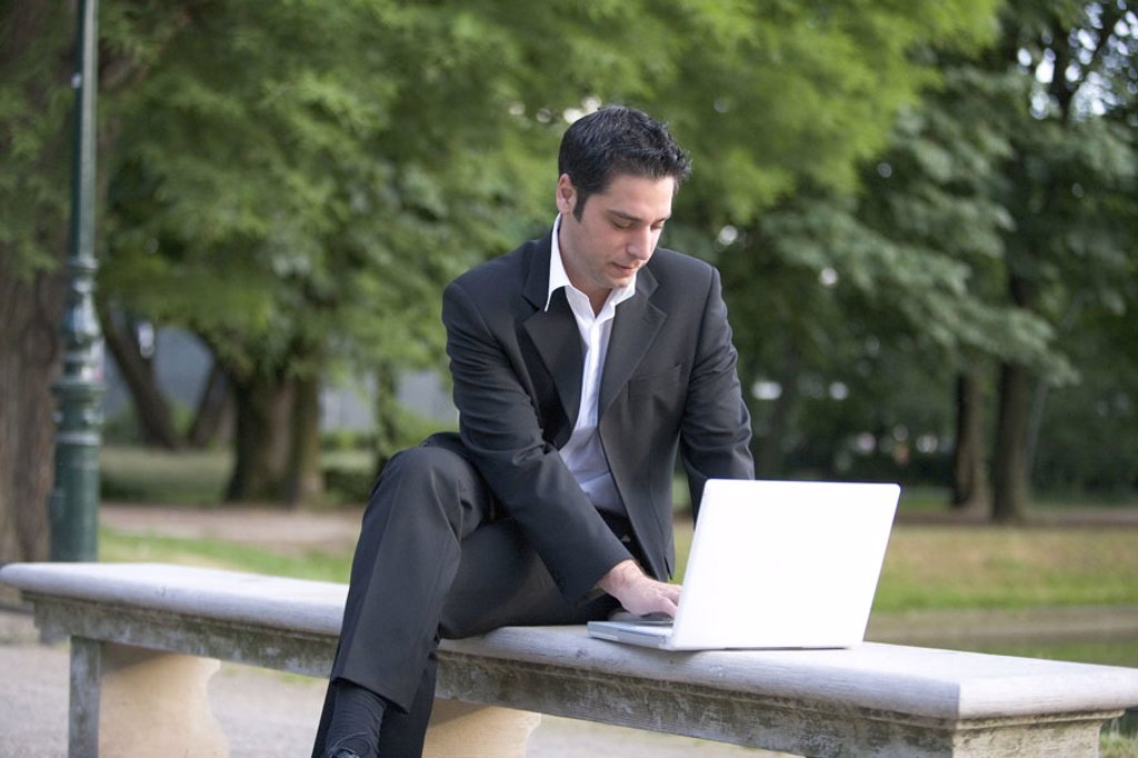 Park bank, businessman, laptop,  Data input, summer,   Series, 20-30 years, man, lunch hour, park,  Bench, Notebook, computers wearable, data retrieval, information, concentration, work, occupation, business, Workaholic, future, career, success, outside, : Stock Photo