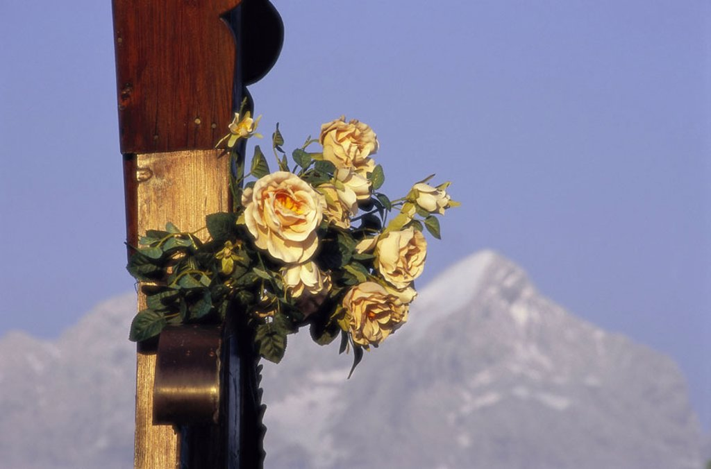 Stock Photo: 1558-87105 Germany, Upper Bavaria, weather stone,  Cross, detail, flowers,  Background, Alpspitze, fuzziness,  Southern Germany, Bavaria, Bavarian Alps, Voralpen, weather stone mountains, mountain, belief, religion, Christianity, flowers, roses,