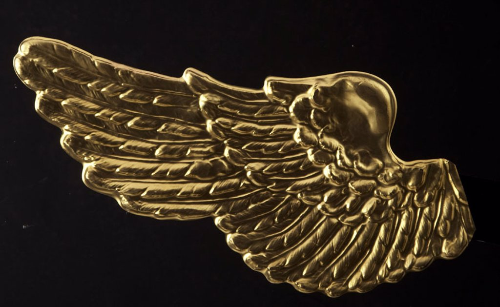 Angel wings, golden,    Studio, free plates, Christmas, Christmas, disguise, wings, gold, quietly, life, fact reception, background black, : Stock Photo