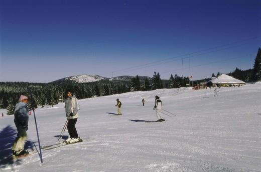 Skipiste,    winter sport, winter sport area, Skigebiet, mountain, hillside, Skihang, track, season, winters, snow, sport, leisure time, hobby, athletes, skiers, skiing, alpine ski, outside, background, T-bar lift, : Stock Photo