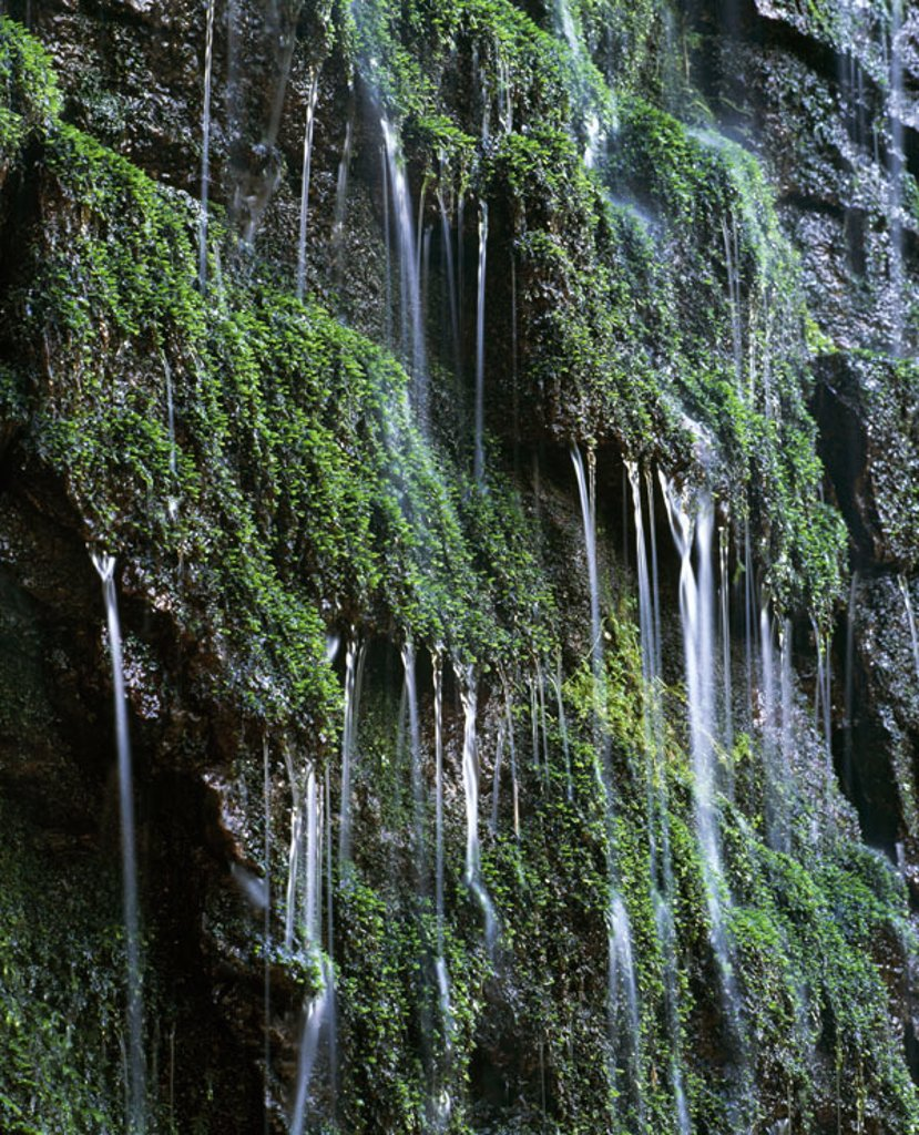 Waterfall, veil case, rocks, moss, : Stock Photo