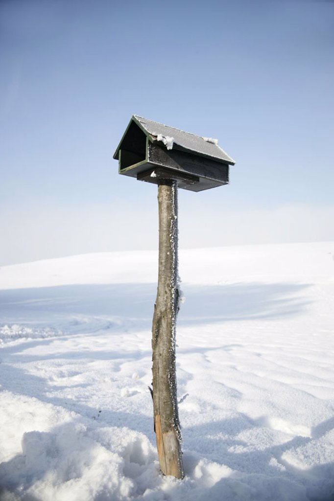Stock Photo: 1558-96979 Winter landscape, little aviary,    Landscape, snow-covered, aviary, feed place, symbol, animals, birds, feeding, feed, feeds bird-seeds, winter feeding season winters cold snow,
