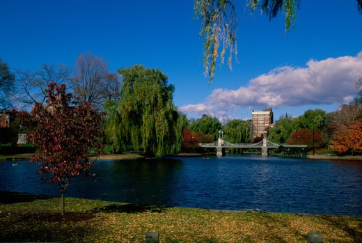 Stock Photo: 1561-407 Bridge in a garden, Boston Public Garden, Boston, Massachusetts, USA